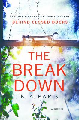 The breakdown Book cover