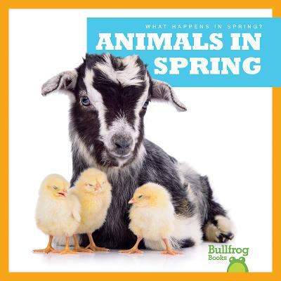 Animals in spring Book cover