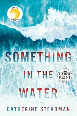 Something in the Water Book cover