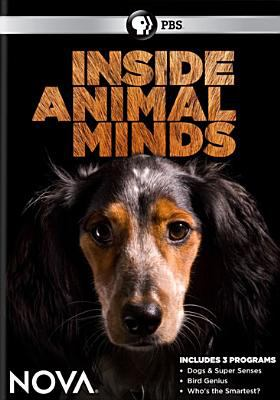 Nova. Inside animal minds Book cover