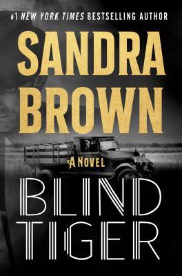 Blind tiger : a novel Book cover